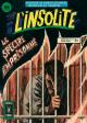 L'INSOLITE - N° 19