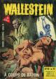 WALLESTEIN - N° 17